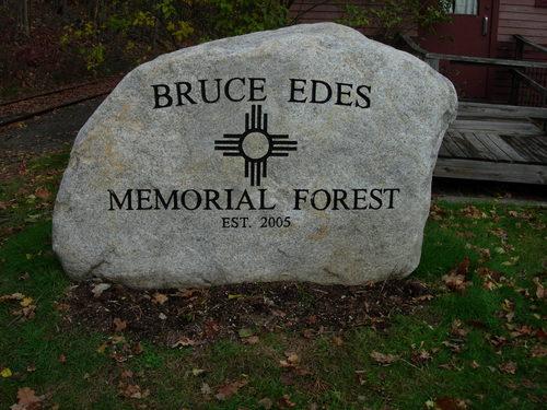 Bruce-Edes-Mem.-Forest-close.jpg