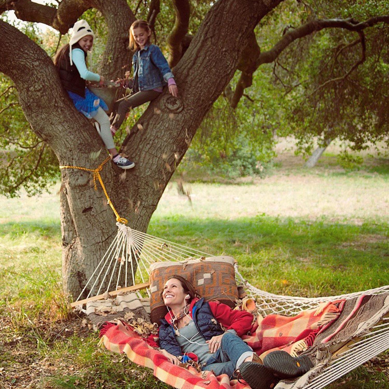 hammock tree.jpg