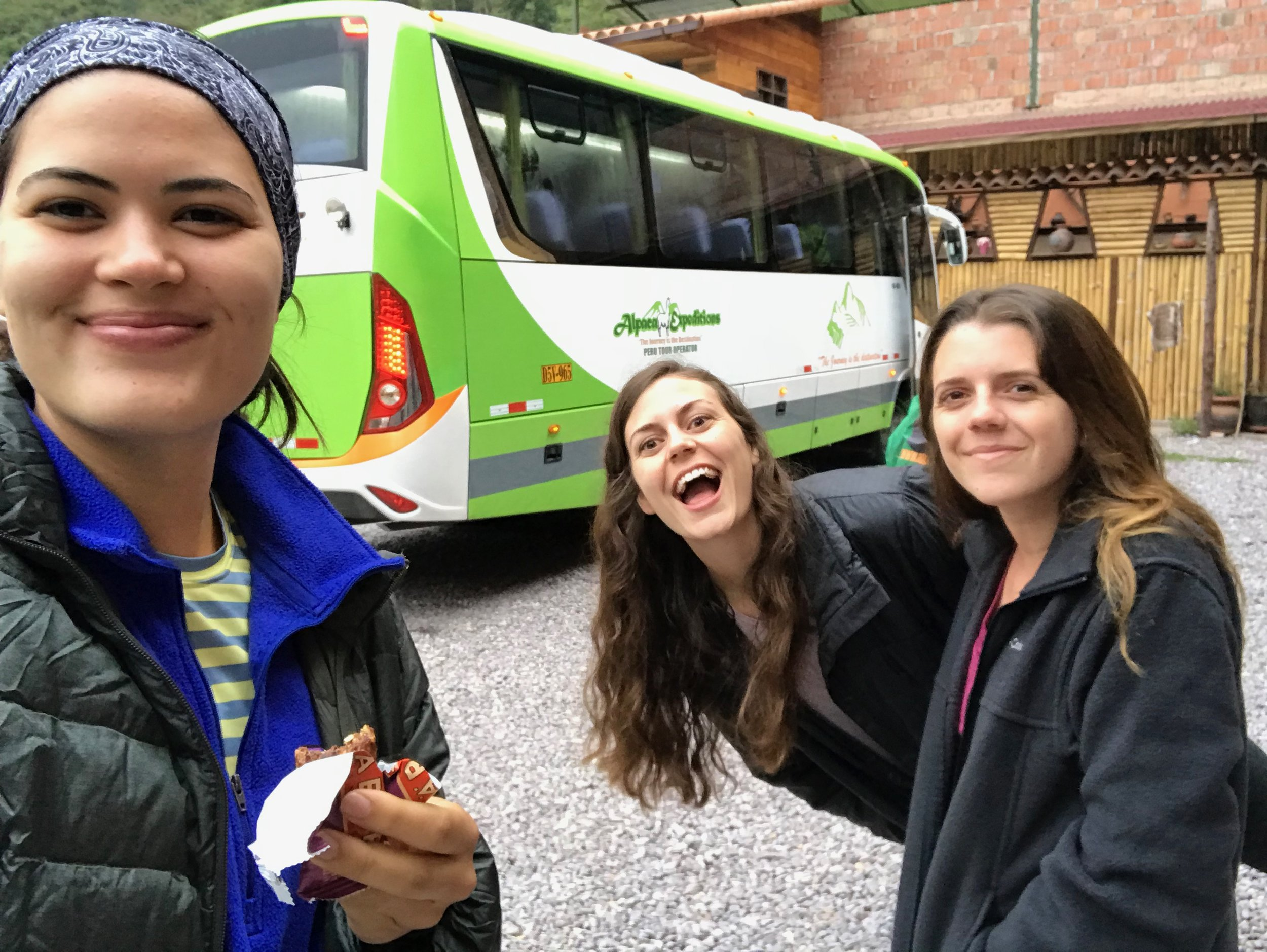 alpaca bus