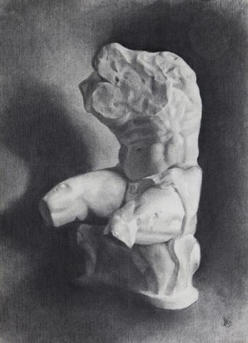 Belvedere Cast Study, Charcoal, 2010.