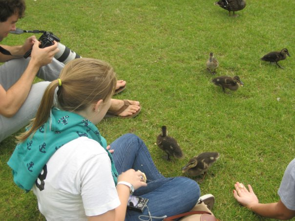 Feeding Ducks.jpg