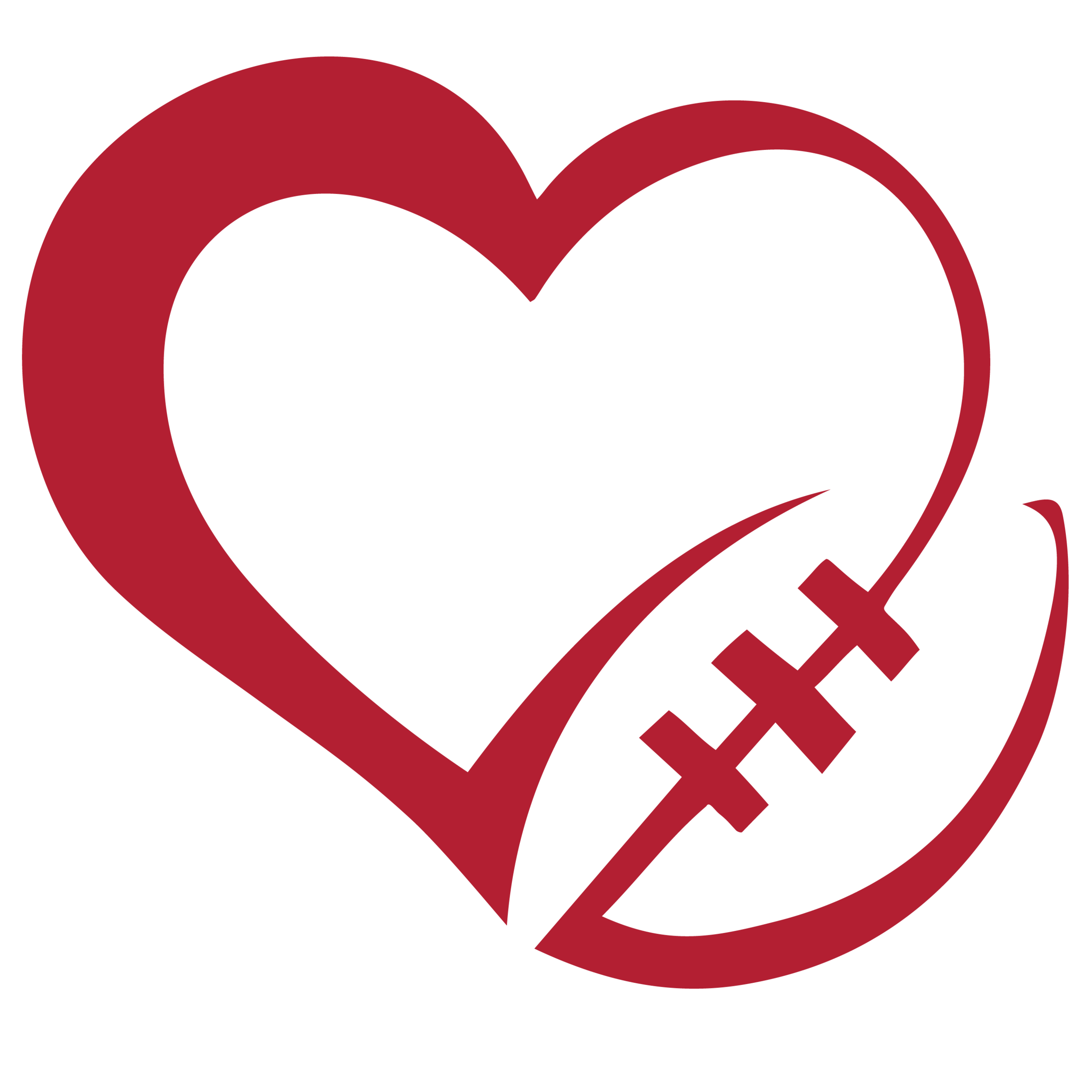 TEXANS FOR A CAUSE - VOLUNTEER TODAY AND HELP US MAKE A DIFFERENCE.
