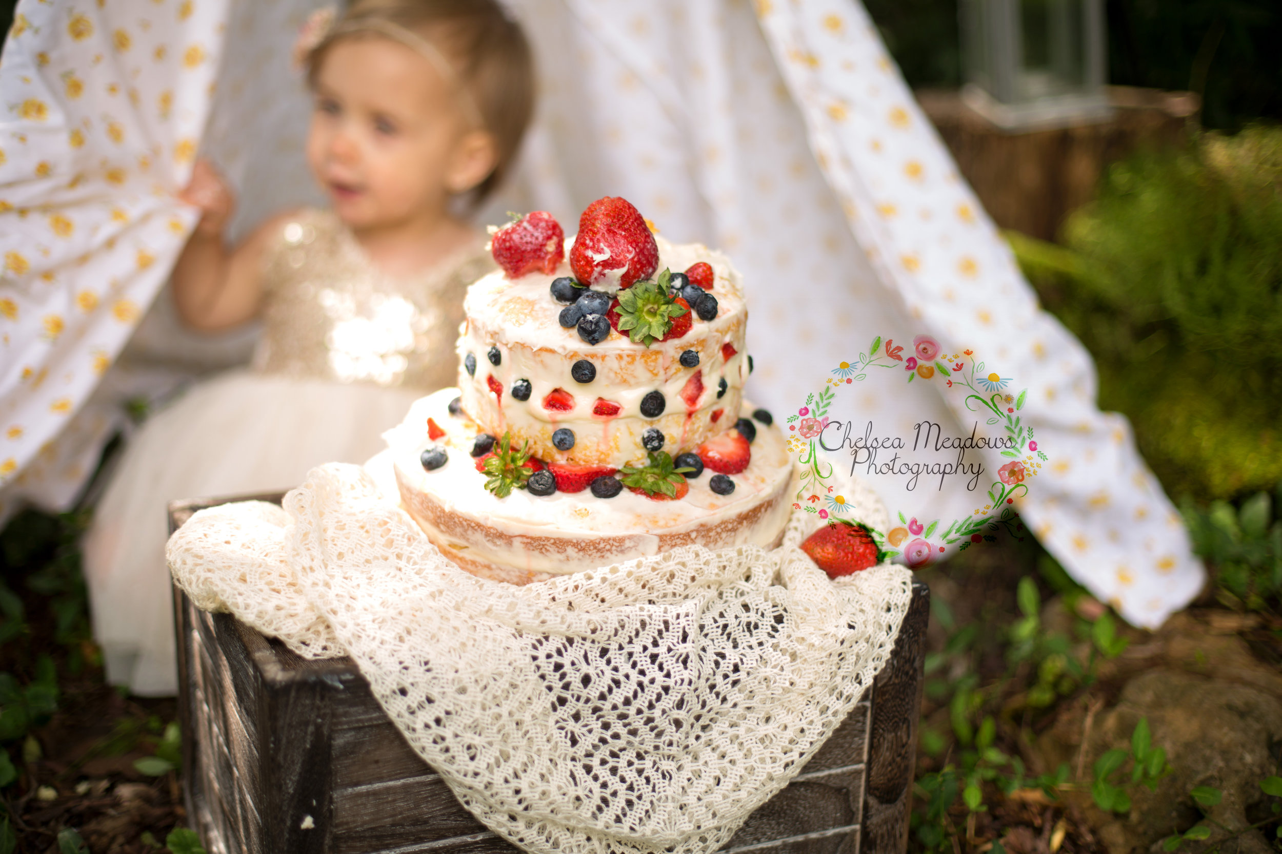 Paisley First Birthay Cake Smash - Nashville Family Photographer - Chelsea Meadows Photography (1).jpg