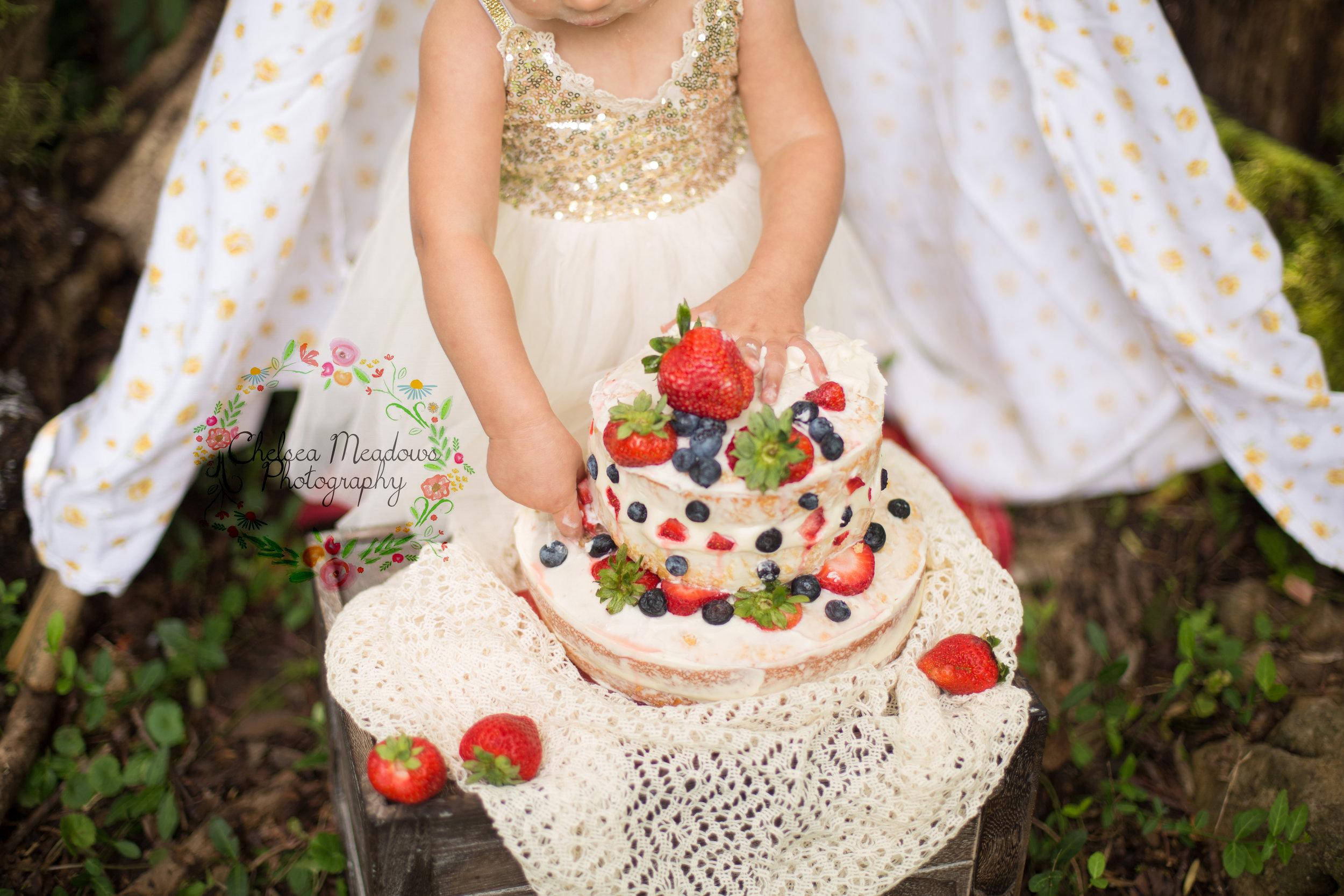 Paisley First Birthay Cake Smash - Nashville Family Photographer - Chelsea Meadows Photography (17).jpg