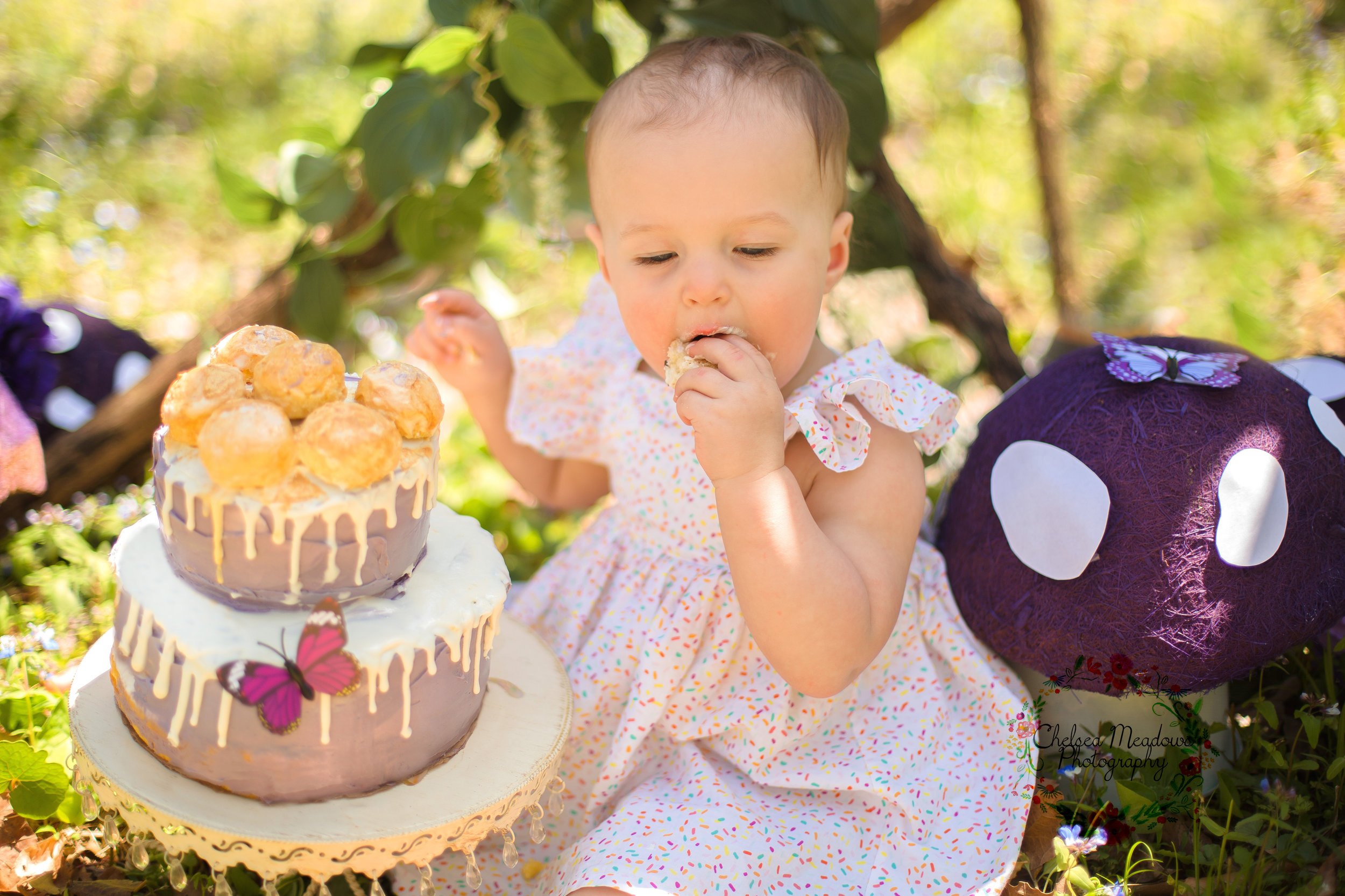 Ivy Cake Smash - Nashville Family Photographer - Chelsea Meadows Photography (20).jpg