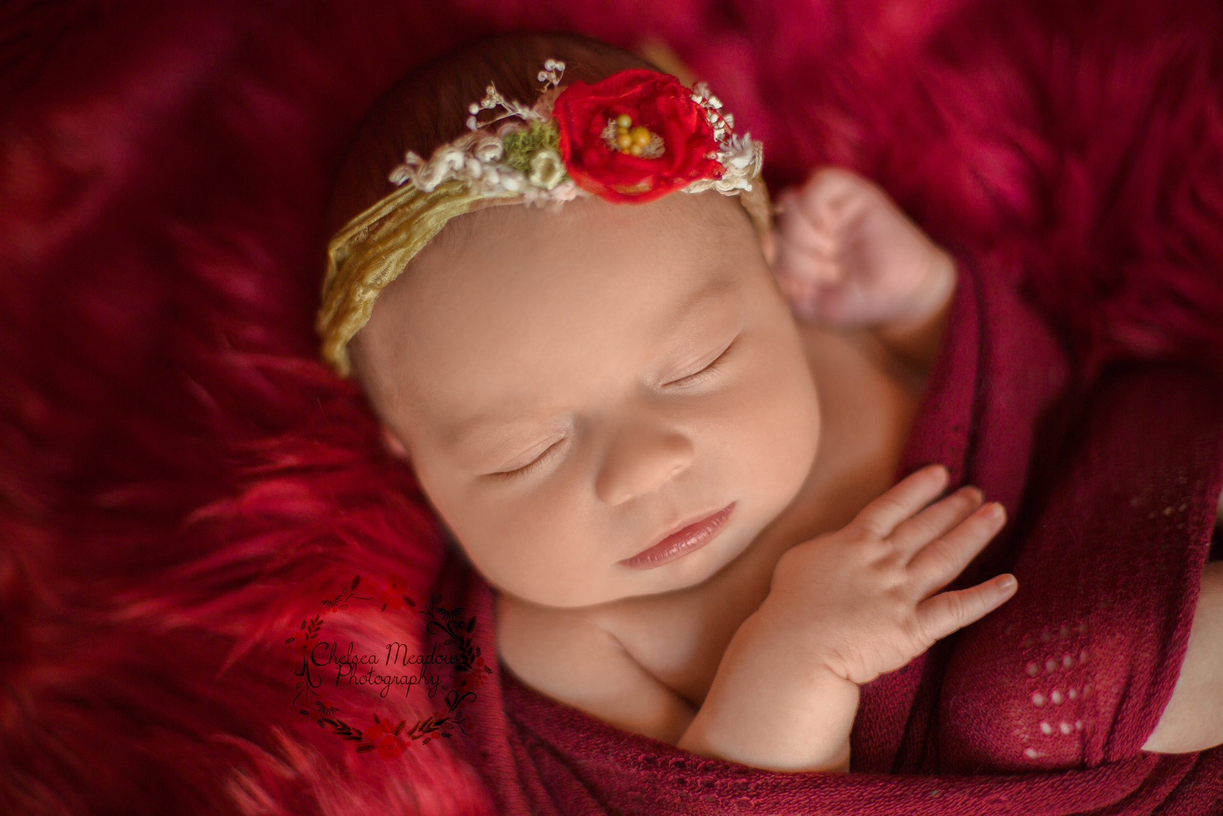 Ella Newborn Photos - Nashville Newborn Photographer - Chelsea Meadows Photography (73).jpg