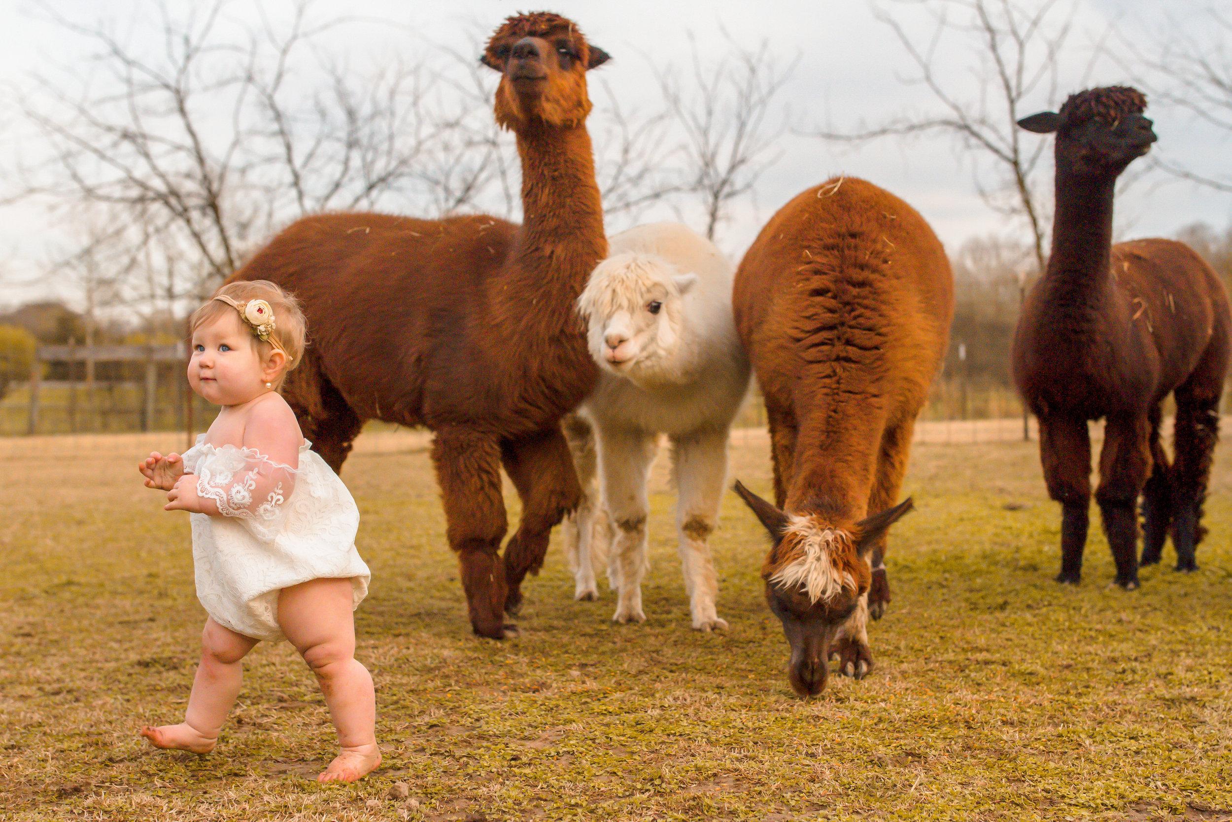 Evelyn First Birthday - Nashville Family Photographer - Chelsea Meadows Photography (14).jpg