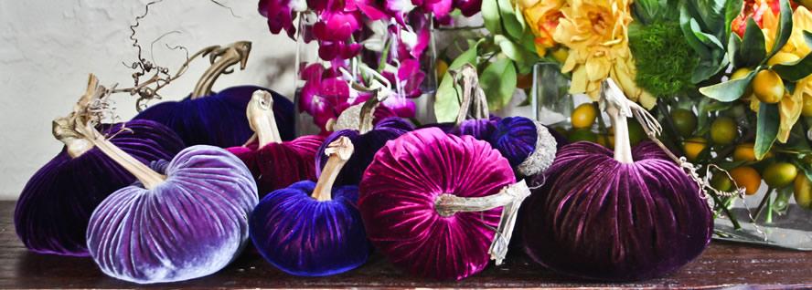photo credits: www.plushpumpkin.com