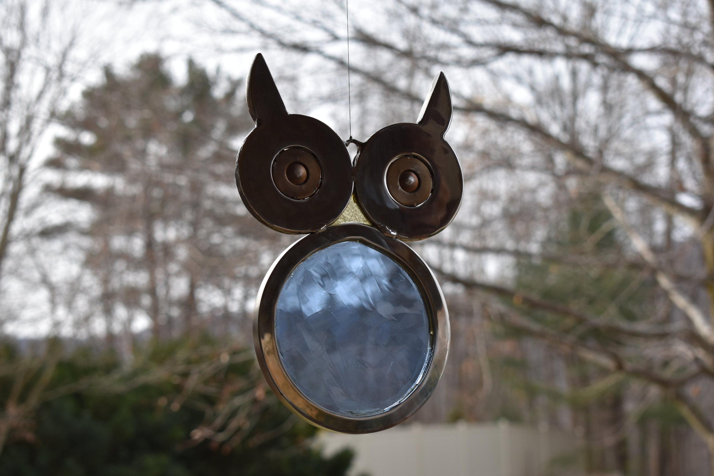 Owl Blue.jpg