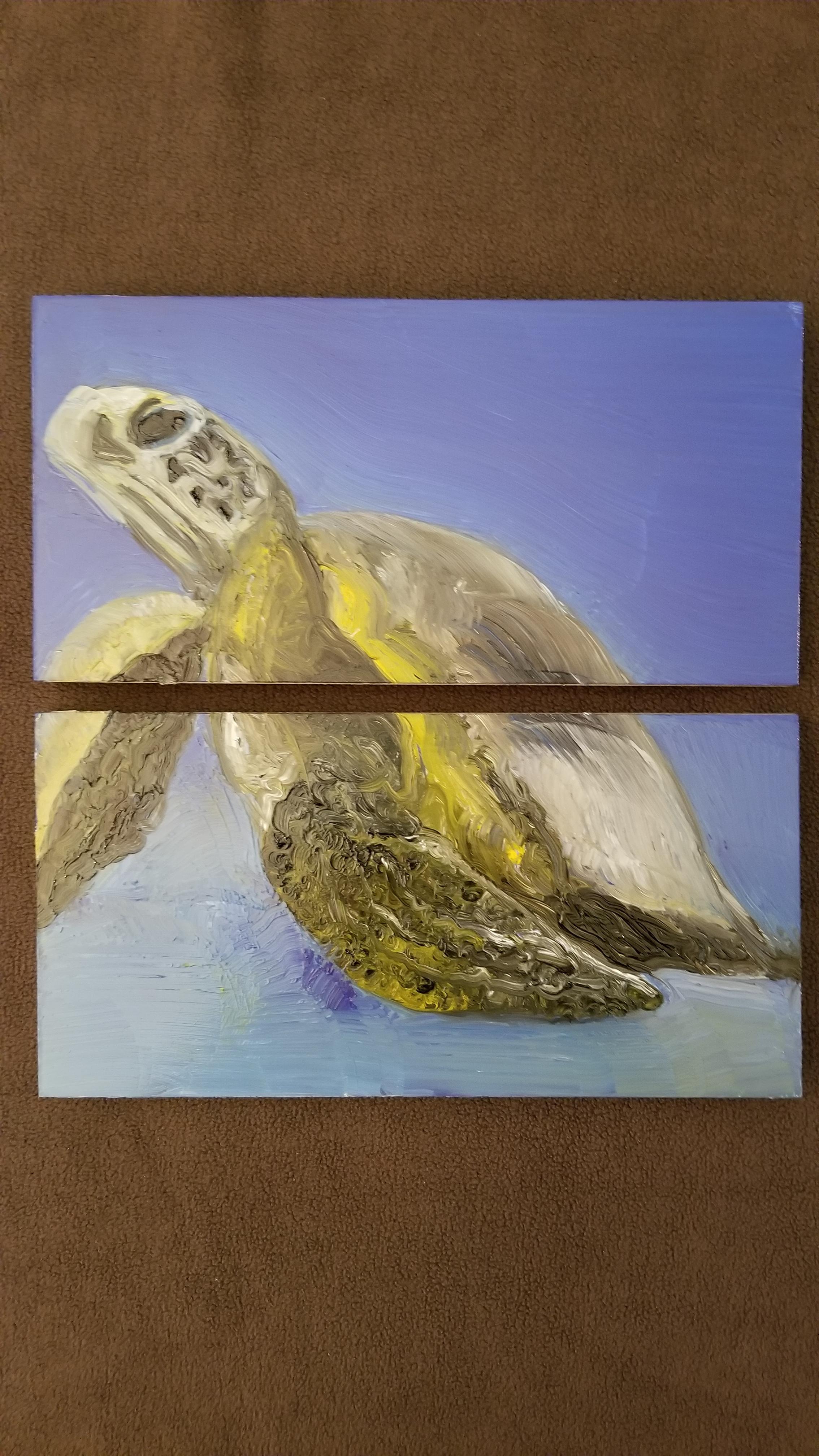 Sea Turtle  Oil on Board, 2017