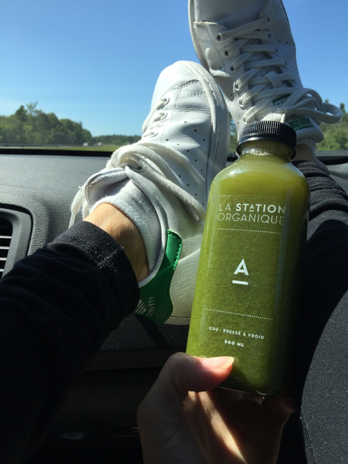 Fresh to-go! - Road-trip-ready as each bottle is securely sealed and perfect for taking on your next trip. No more gross, greasy roadside drive through fast food!