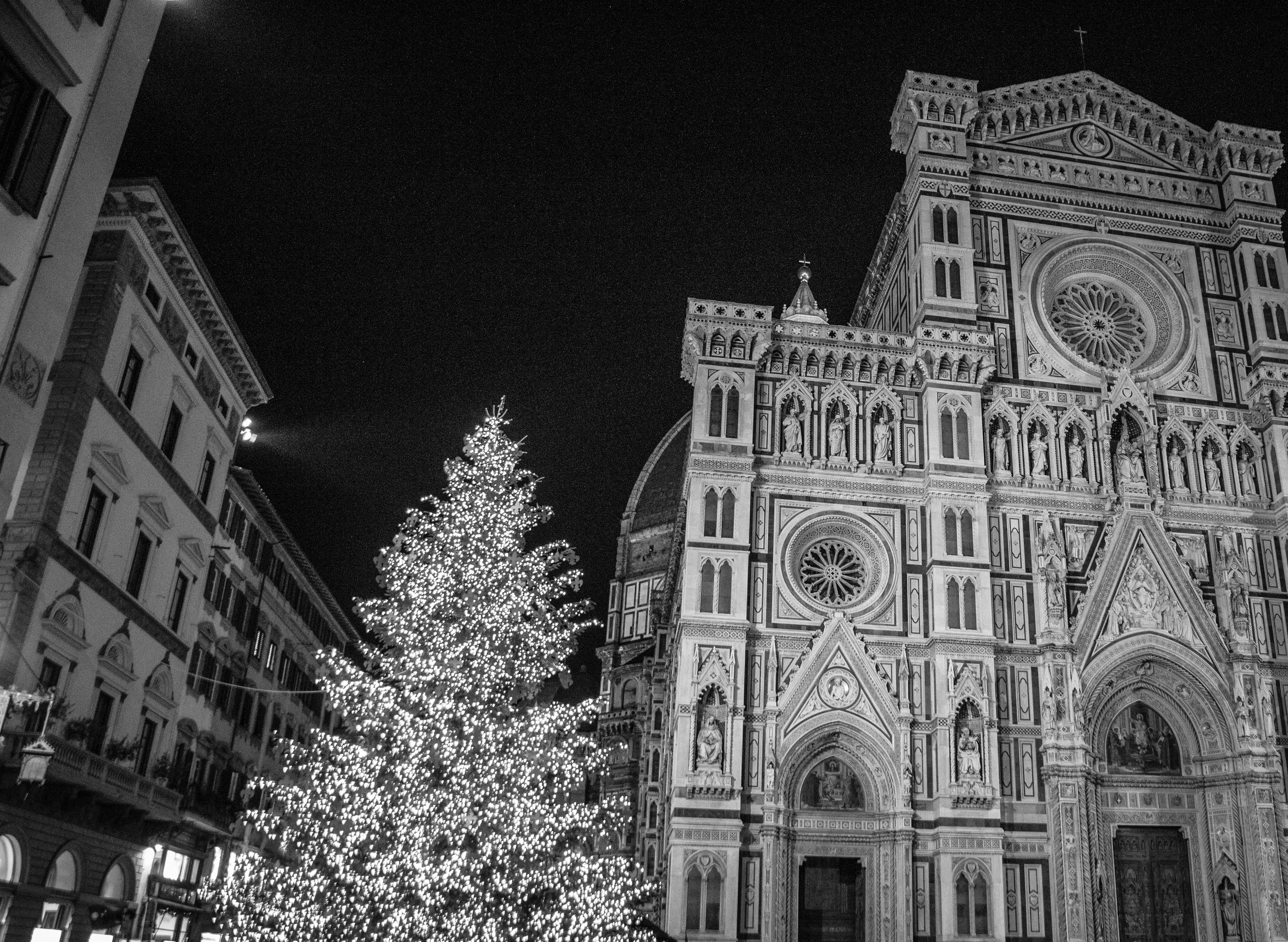 Florence-94.jpg