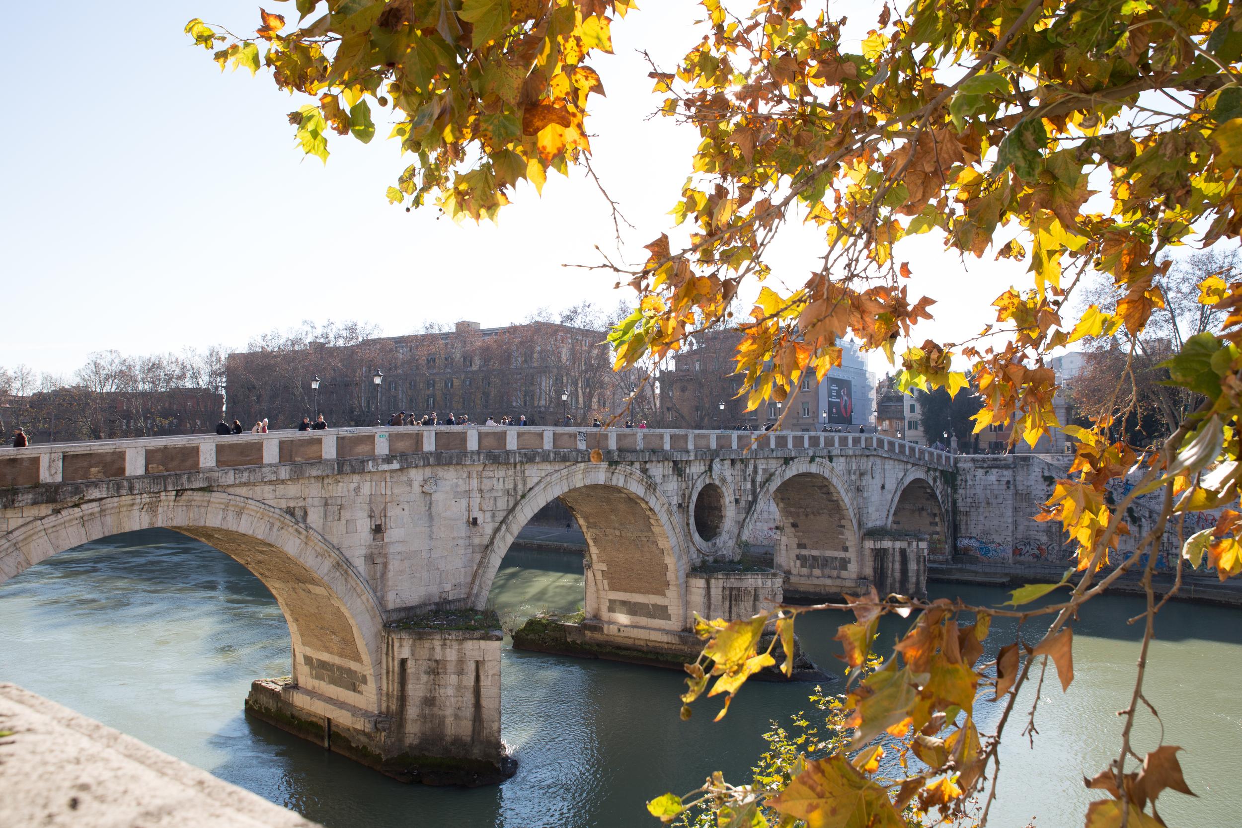 Rome-85.jpg