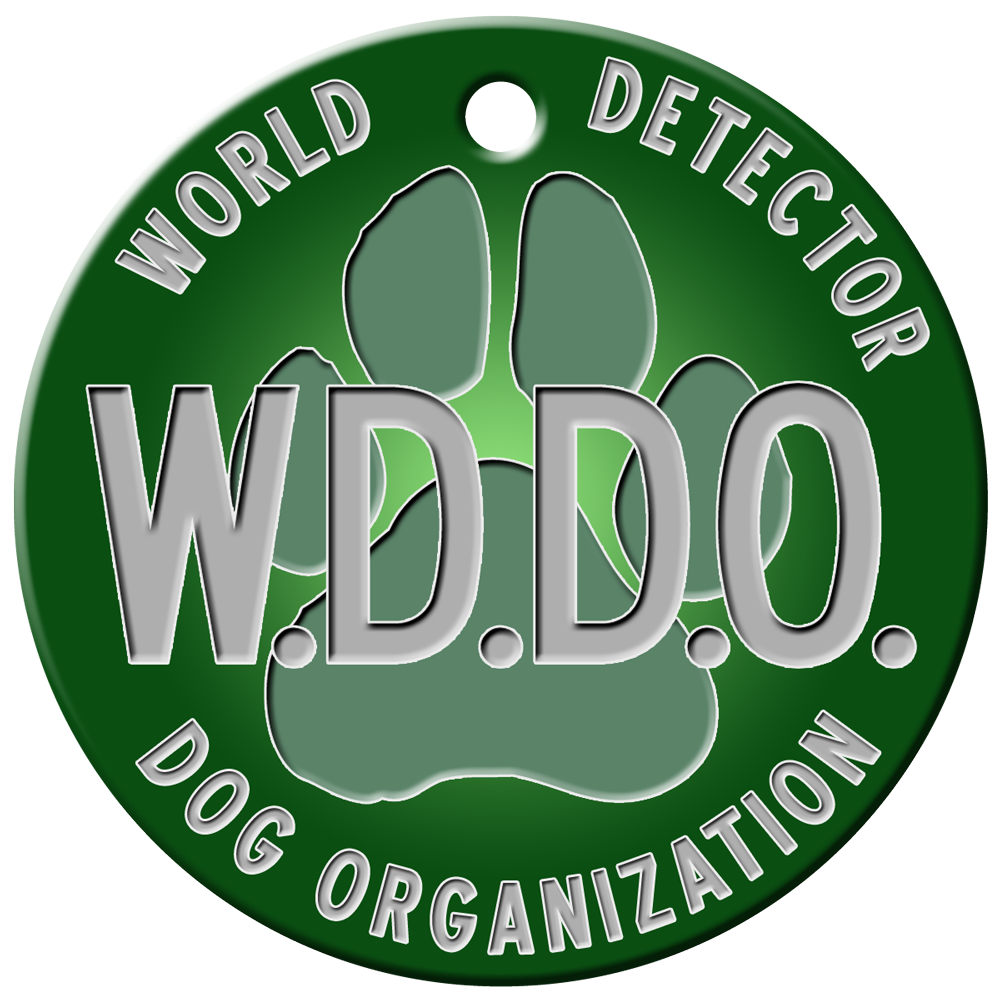 wddo-logo-higher-rez-png trifold.png