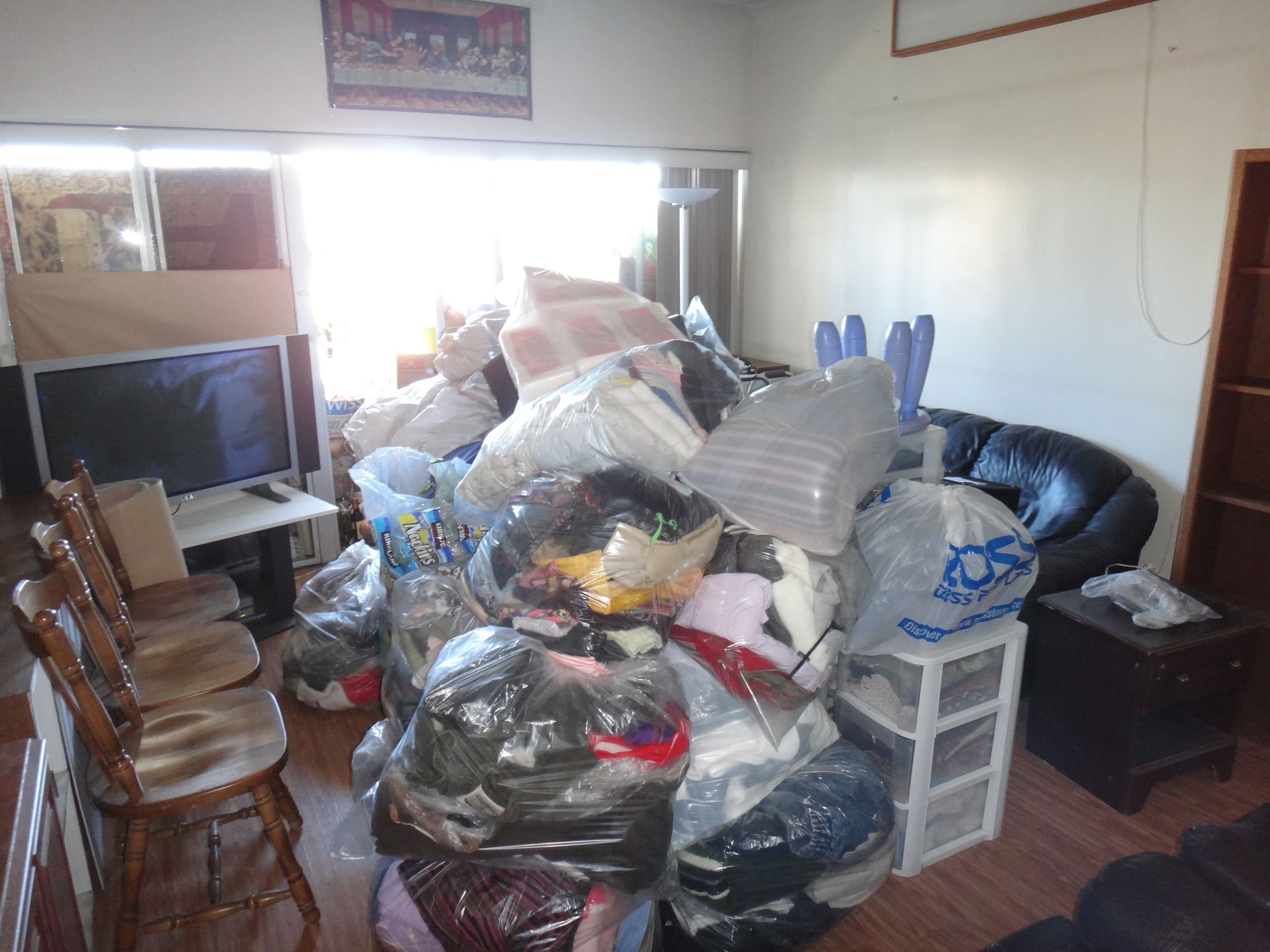 Clutter sorted, bagged and prepped for treatment.