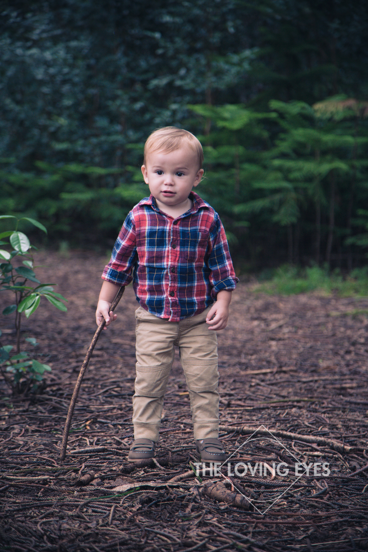 Child Portrait in the Woods in Hawaii