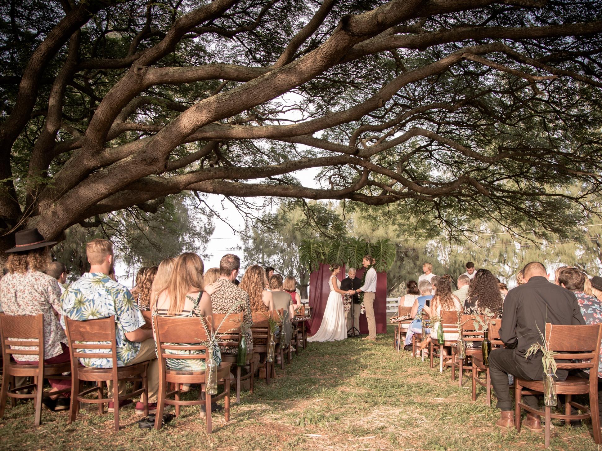 outdoor-wedding-ceremony-in-hawaii.jpg