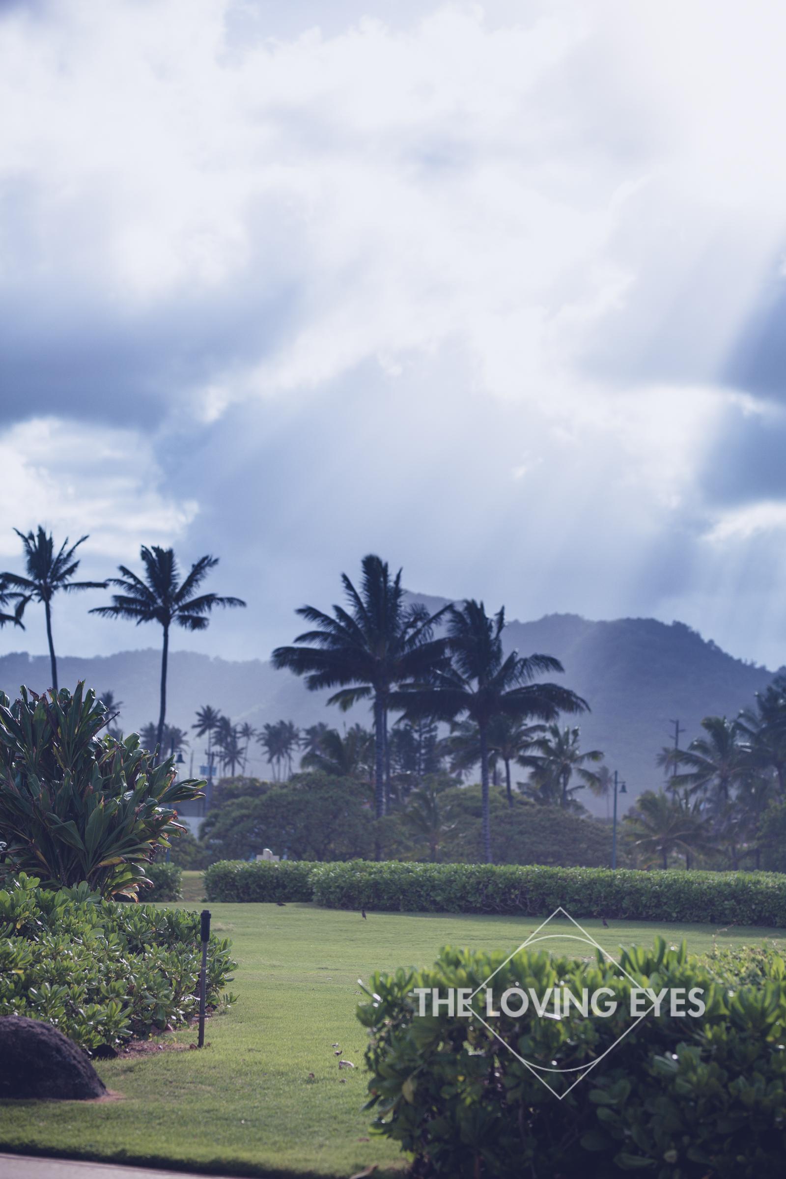 Destination Wedding on Kauai-11.jpg