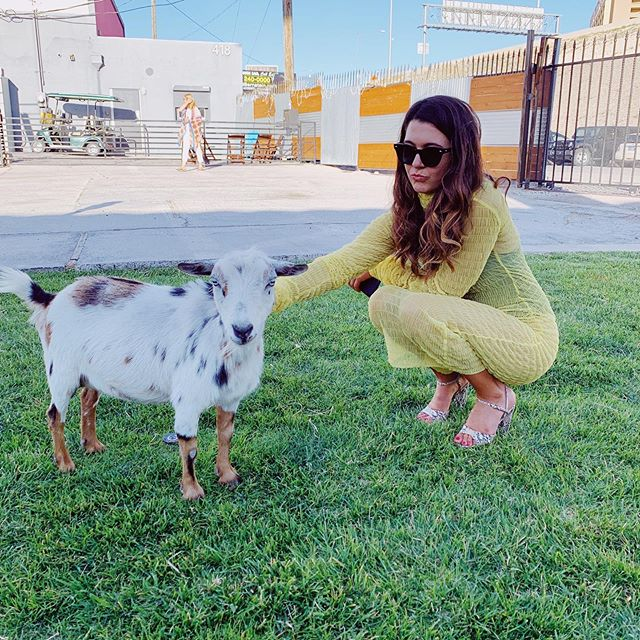 #throwback to this goat and a weekend to never forget 💥