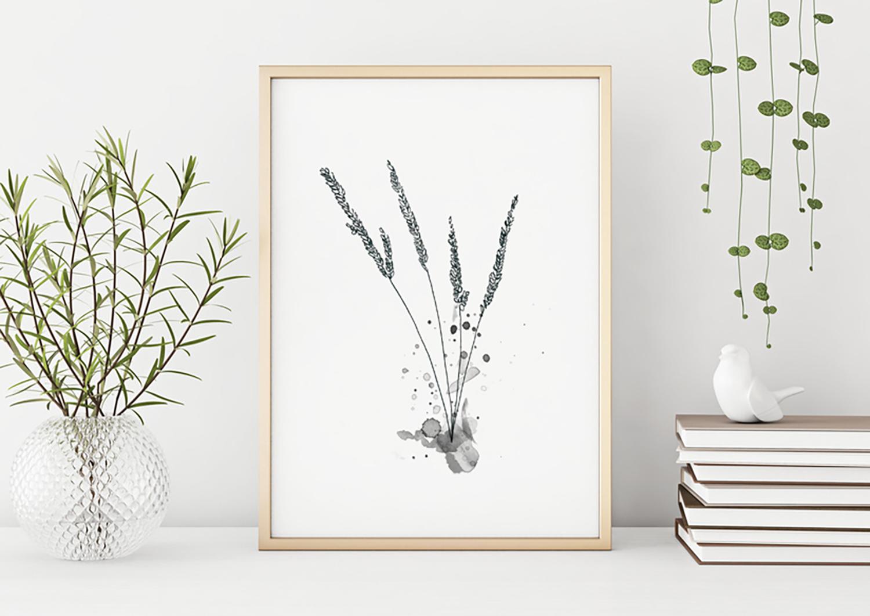 Gräser sw rahmen.jpg