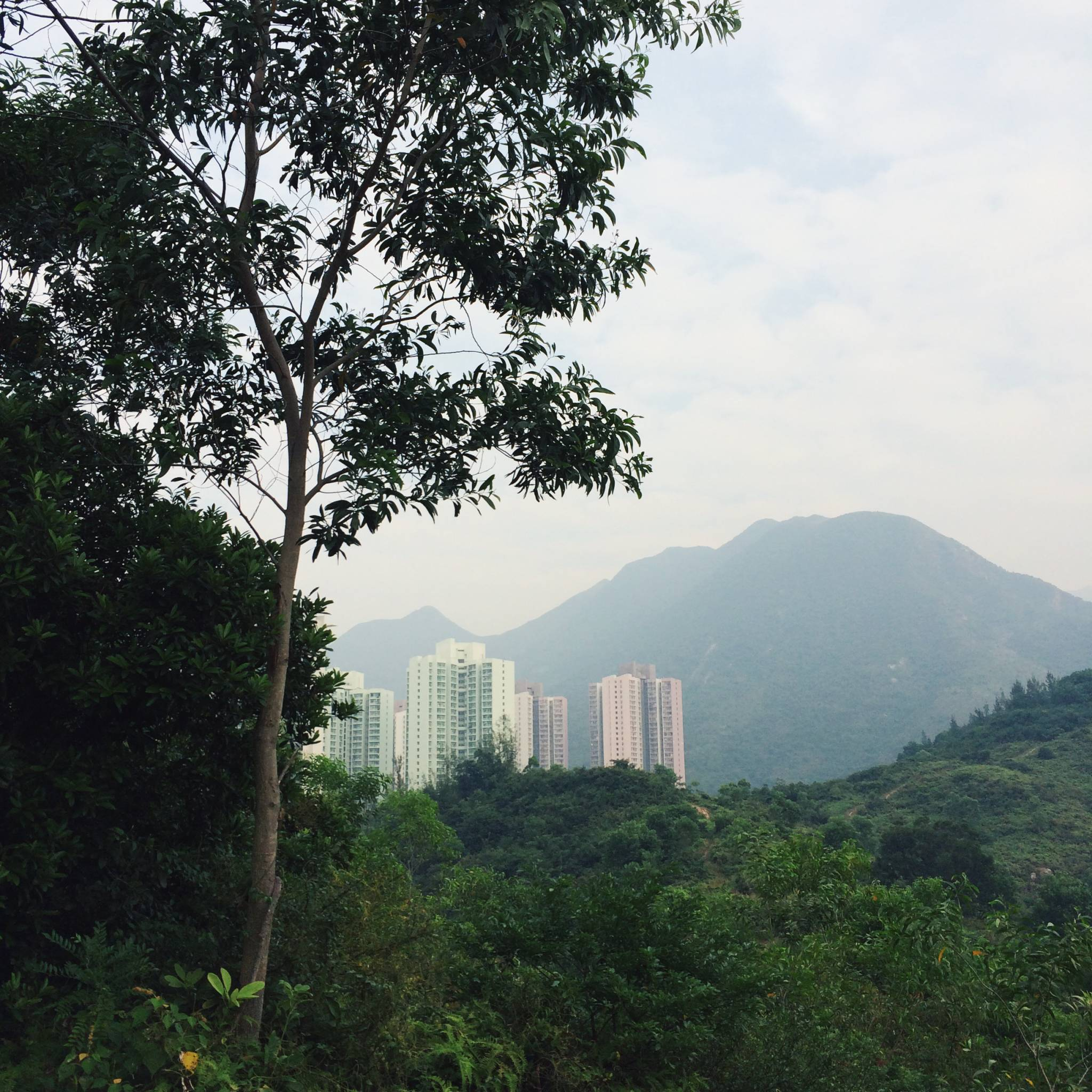 View of Tung Chung town