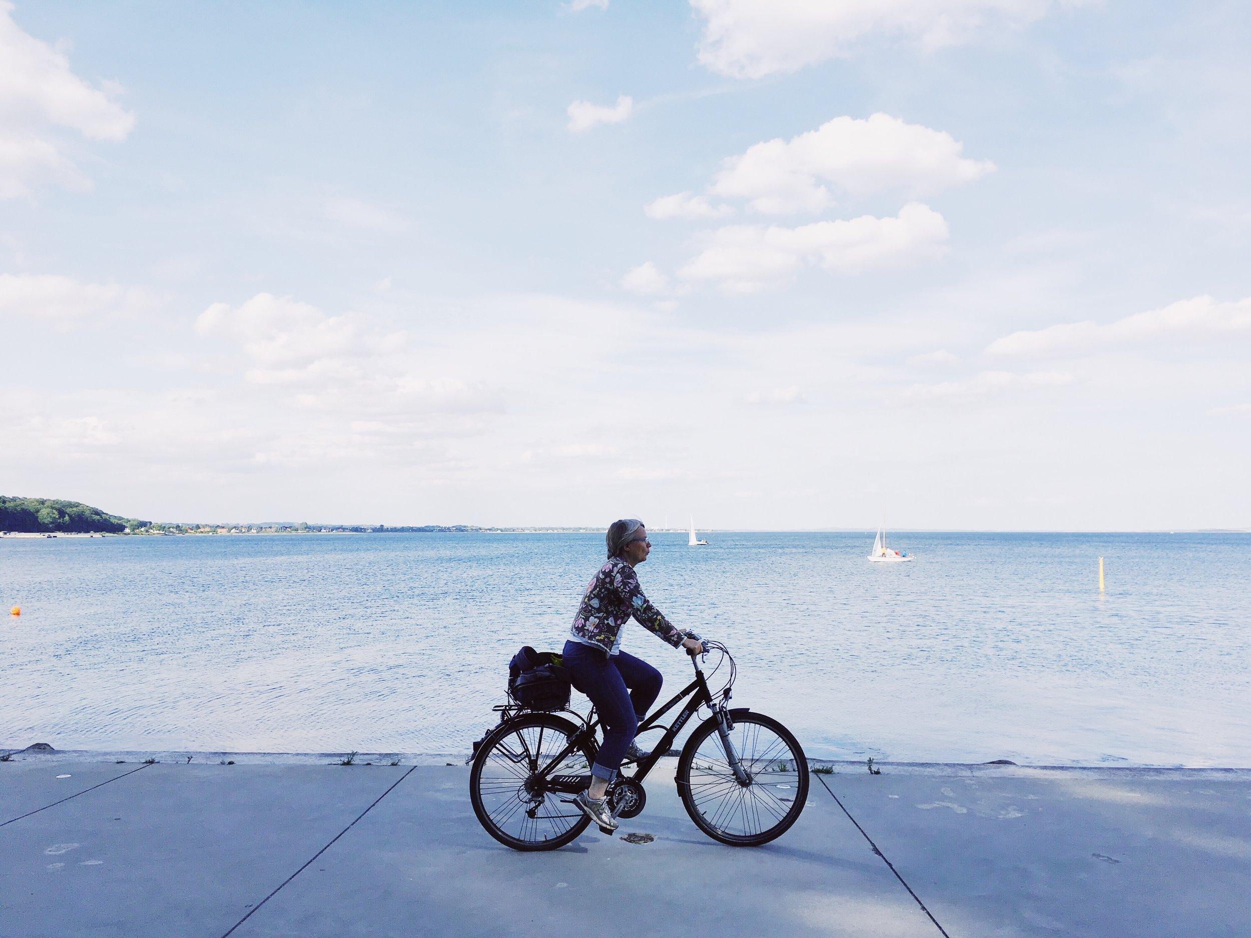 Cyclist (Århus, Denmark)