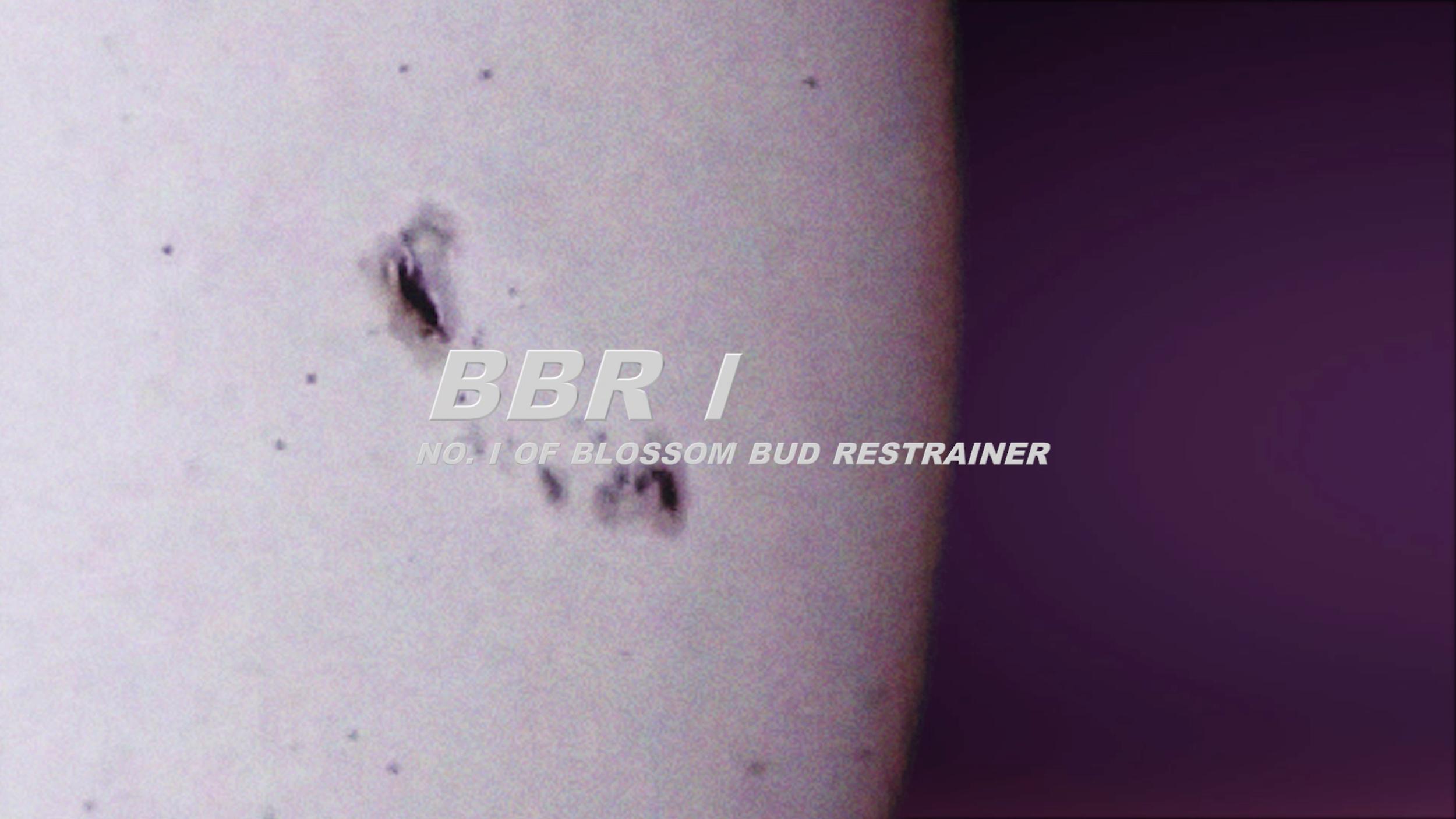 bbr1.jpg
