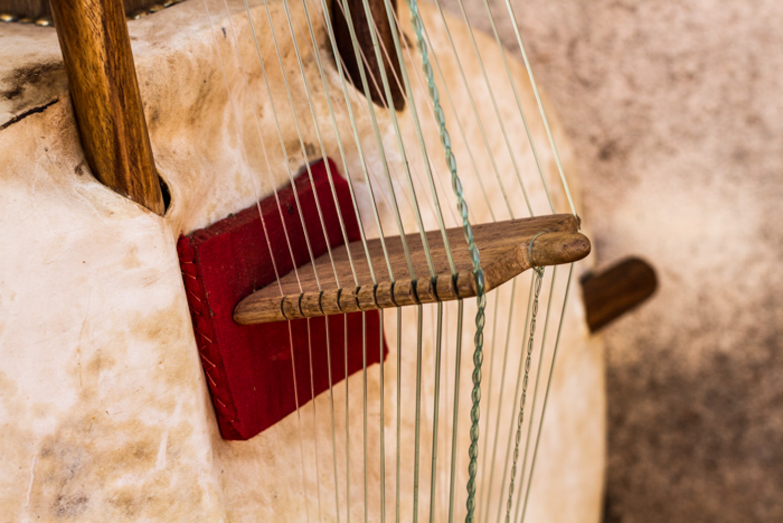 Spot on Mali Music Kora-3.jpg