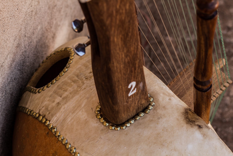 Spot on Mali Music Kora-9.jpg