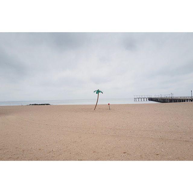 ⠀ Tree, Brighton Beach⠀ •⠀ •⠀ •⠀ •⠀ •⠀ #broadmag #greatermag #rentalmag #noicemag #myfeatureshoot #somewheremagazine #ourmag #stellarmagazine #gominimalmag #nextjauntmag #oksfieldmag #minimalzine #minimalmonday #minimal #streethoney #fragmentphotos #deathb4digital #paperjournalmag #urbanlandscape #fisheyelemag #subjectivelyobjective #thisaintartschool #leica #leica_photos #leicacamerafrance #lightbox #yesnycgo #leicastoreparis