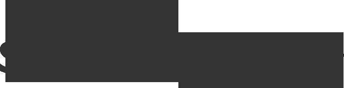 skirt logo.png