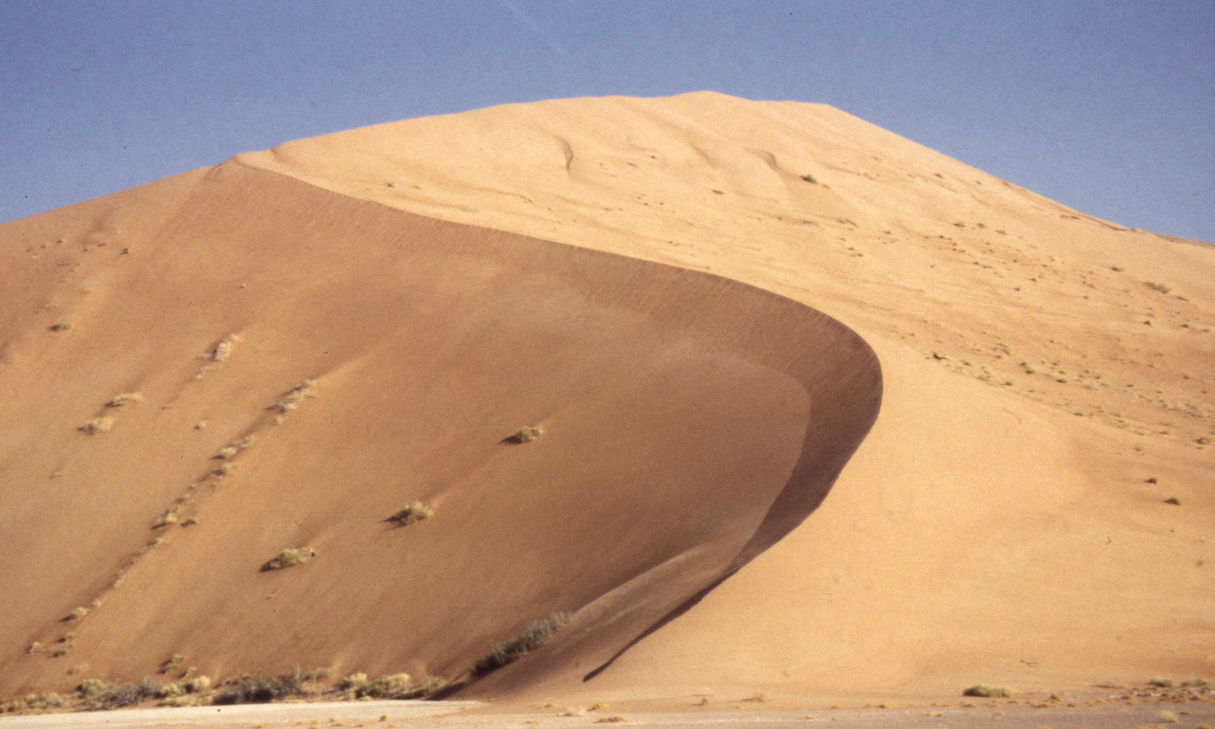 Oman_1998_Scan0248.jpg
