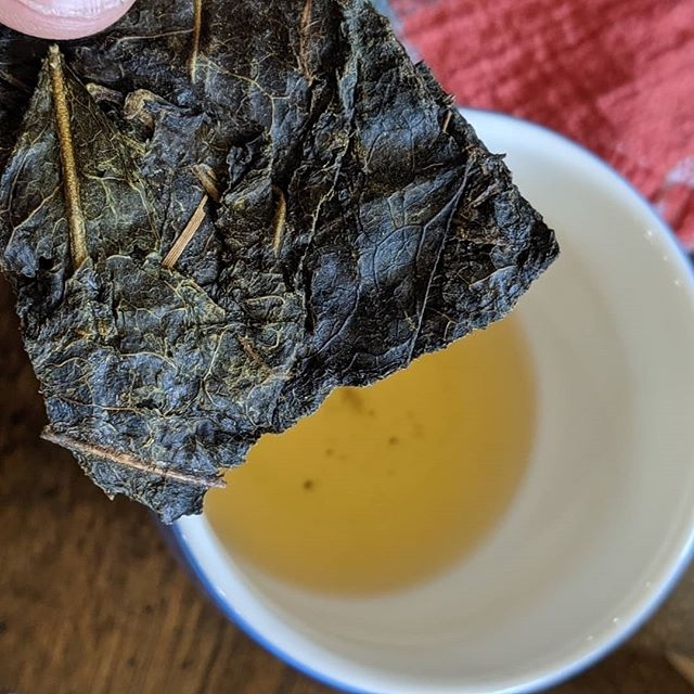 Alright, my Dad broke my brain on this one. A sour, aged Japanese green tea - goishicha. It's wild and NOT for everyone. . . . #tea #goishicha #greentea