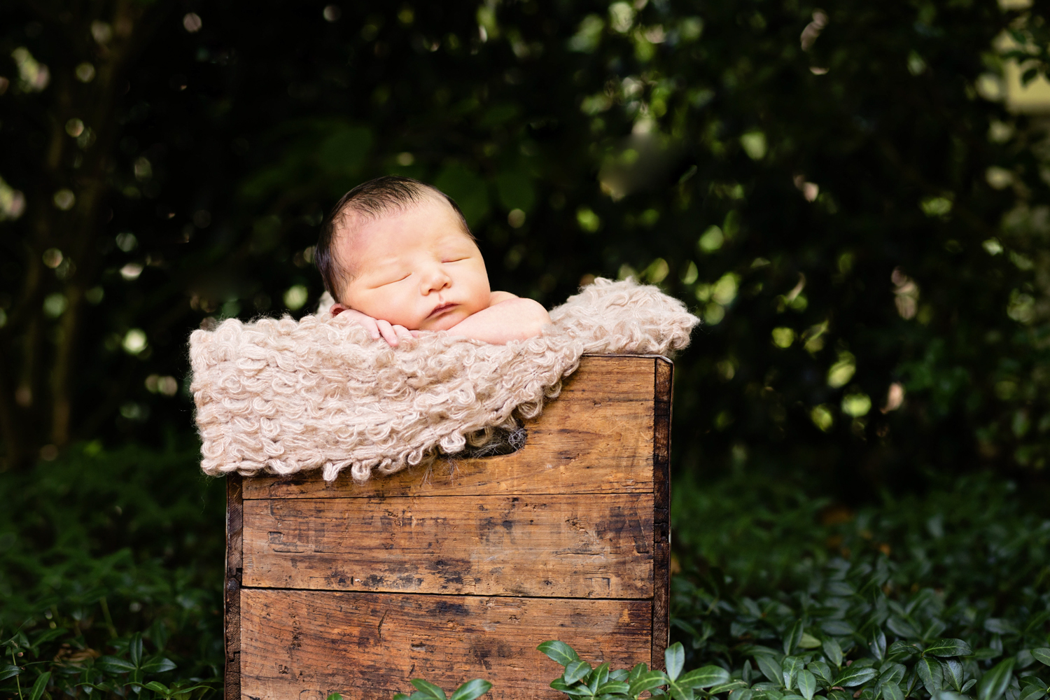 Christina McPherson Photography, boston, newborn, baby, children, photography, photographer, childrens