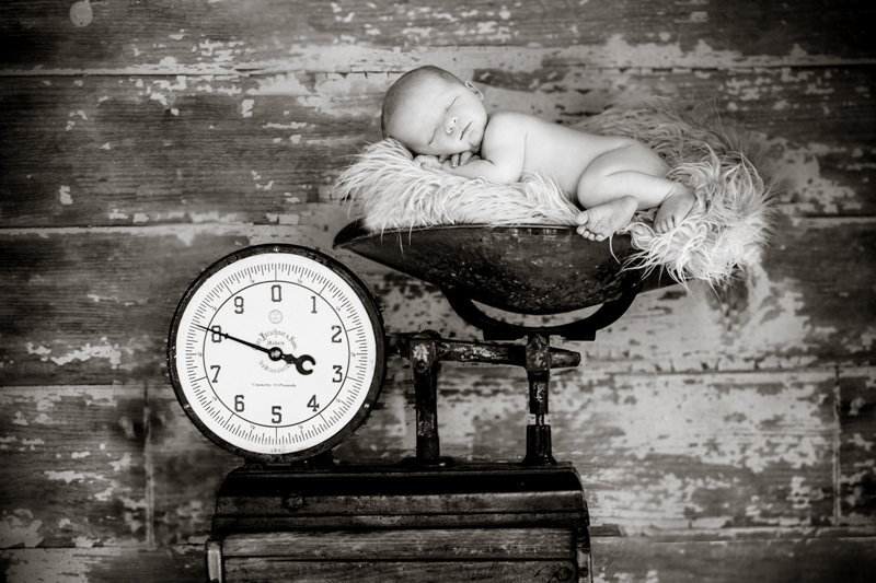 christina mcpherson photography,boston newborn photographer, boston childrens photograper