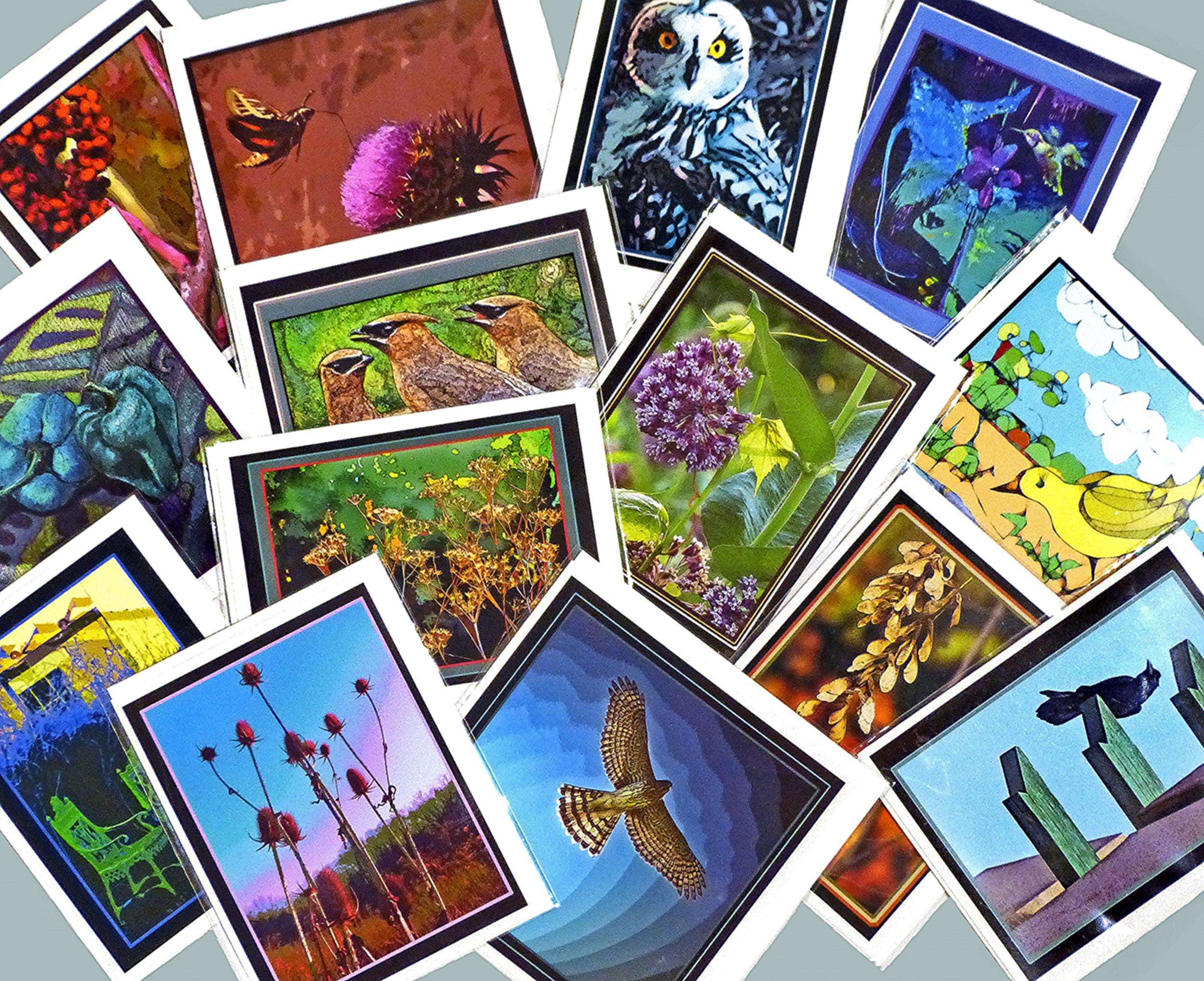 cardsP1860144.jpg