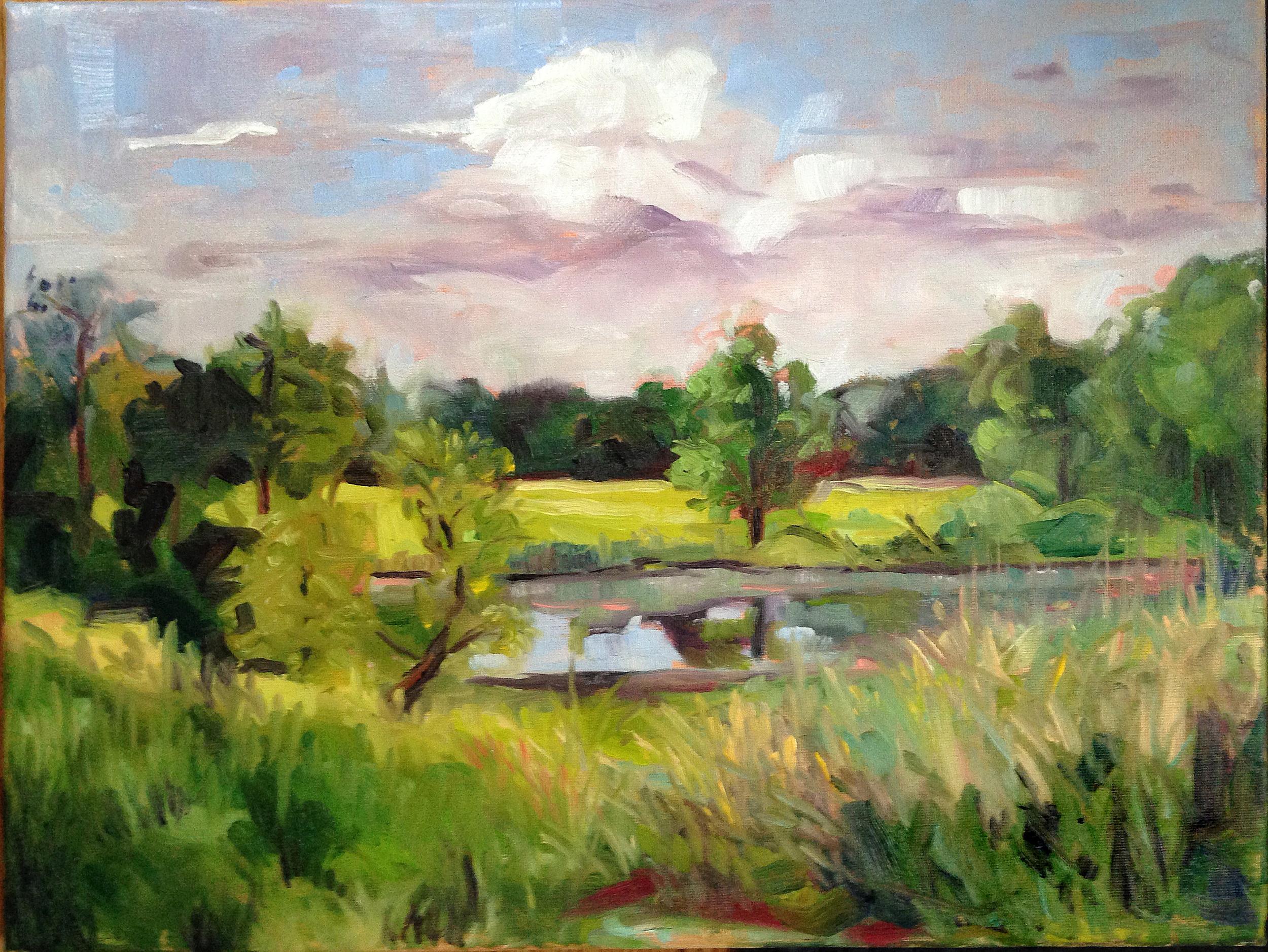 Pond at Prairie Garden Trust - SOLD