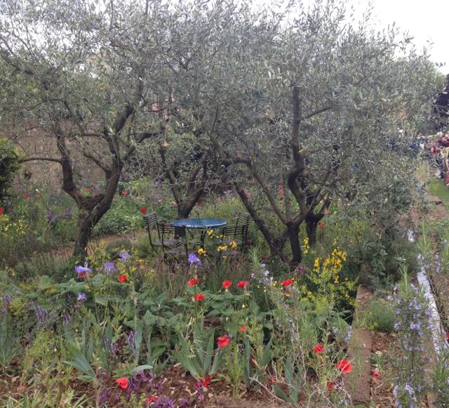 Gold medal winner - A Perfumer's Garden in Grasse