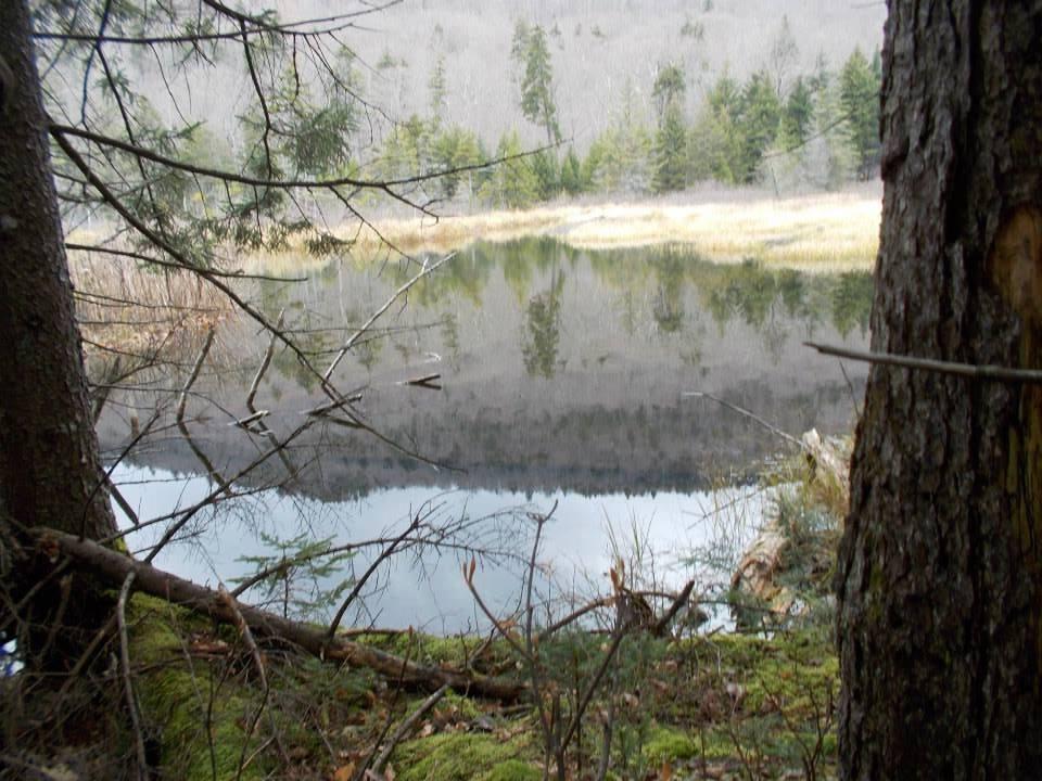 Wilderness camping.jpg