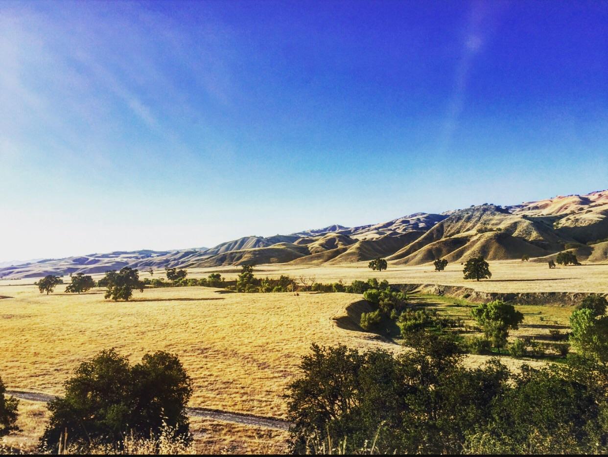 Photo courtesy: California Dreamin'