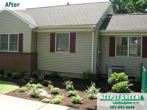 Newly designed landscape, including hardy shrubs, perennials, and flowers. Carlstadt, NJ 07072