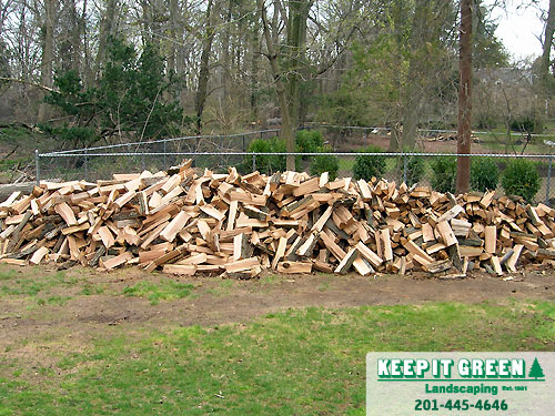 Completed log splitting. Firewood is now ready for stacking. Glen Rock, NJ 07452