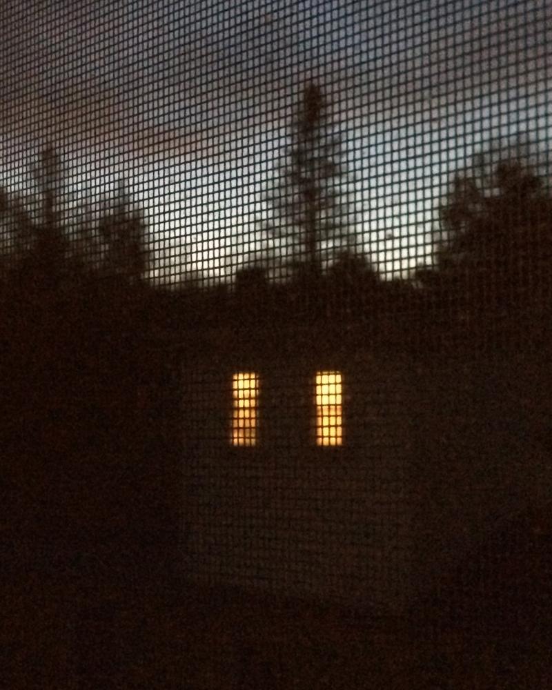 Next door (evening in Johnson, VT)