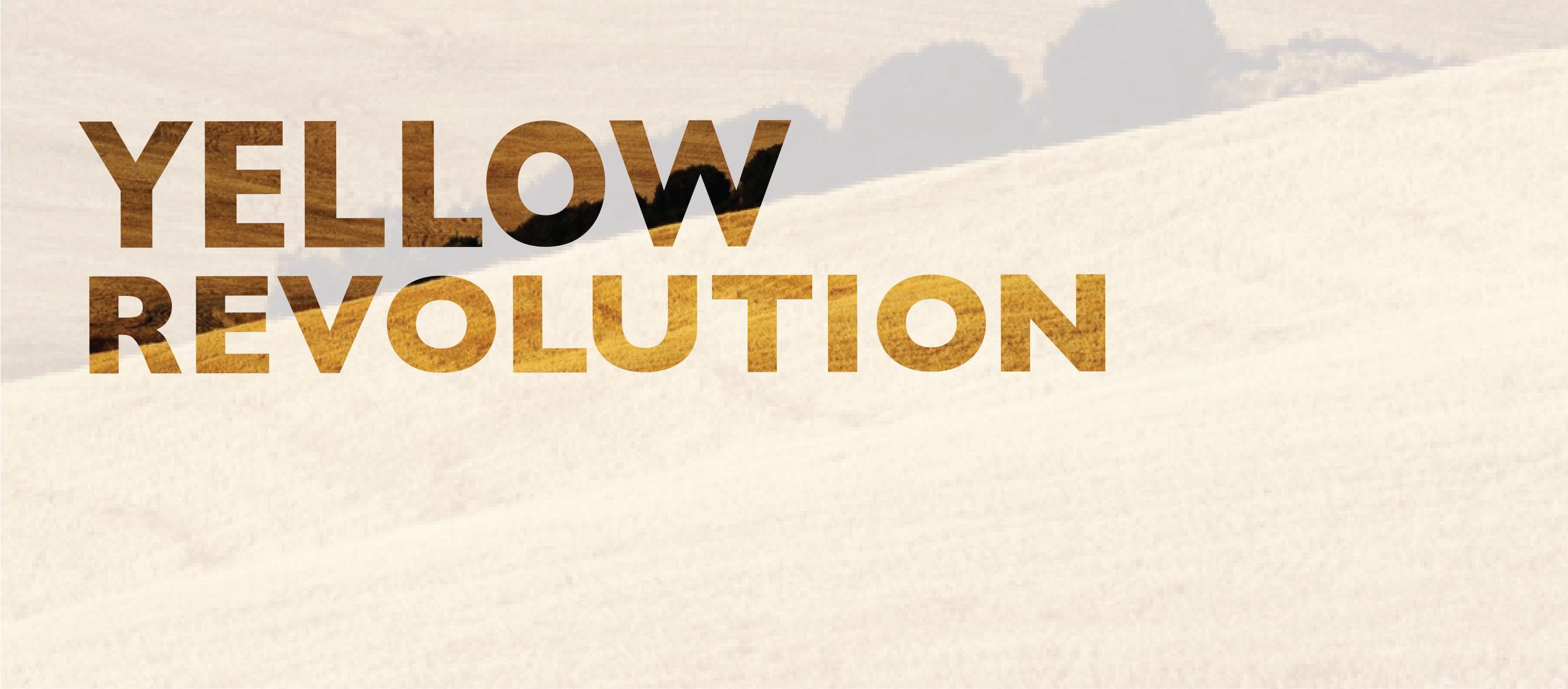 YellowRevolution.jpg