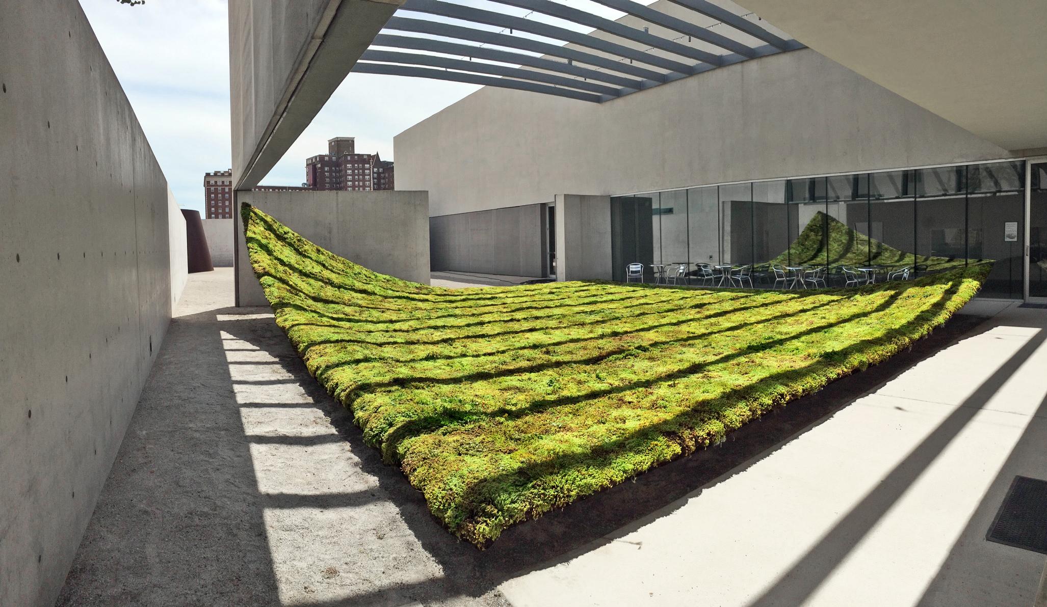Green Varnish at CAM. Saint Louis, MO