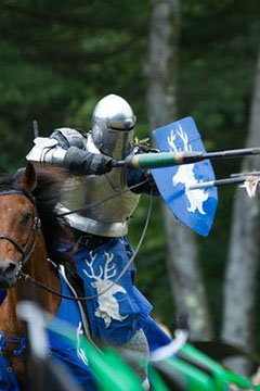 See the Joust!     Come see brave knights on horseback jousting on our field of honor! Watch as they perform feats of skill and daring. This is a rare chance to get up close and see the action like no other festival!