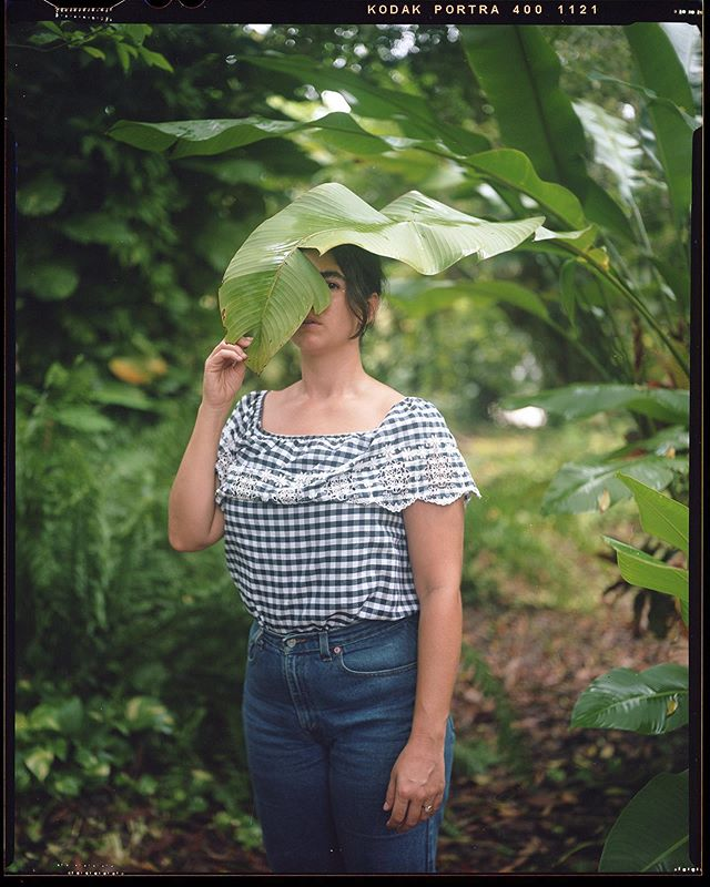 Scanned the 4x5s from my parents' magical backyard in Miami 🍃
