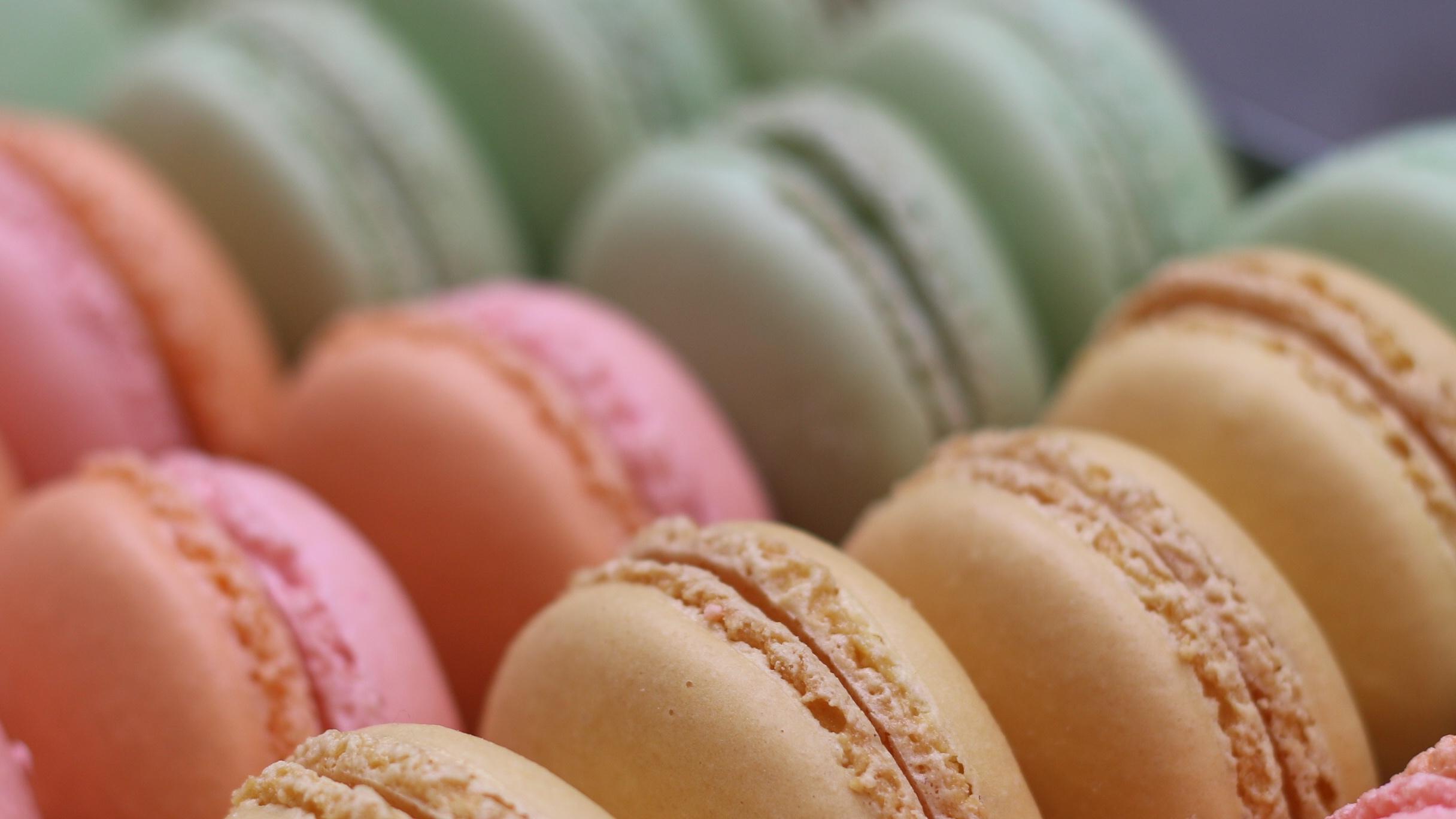 Macaron+Spring_3.jpg