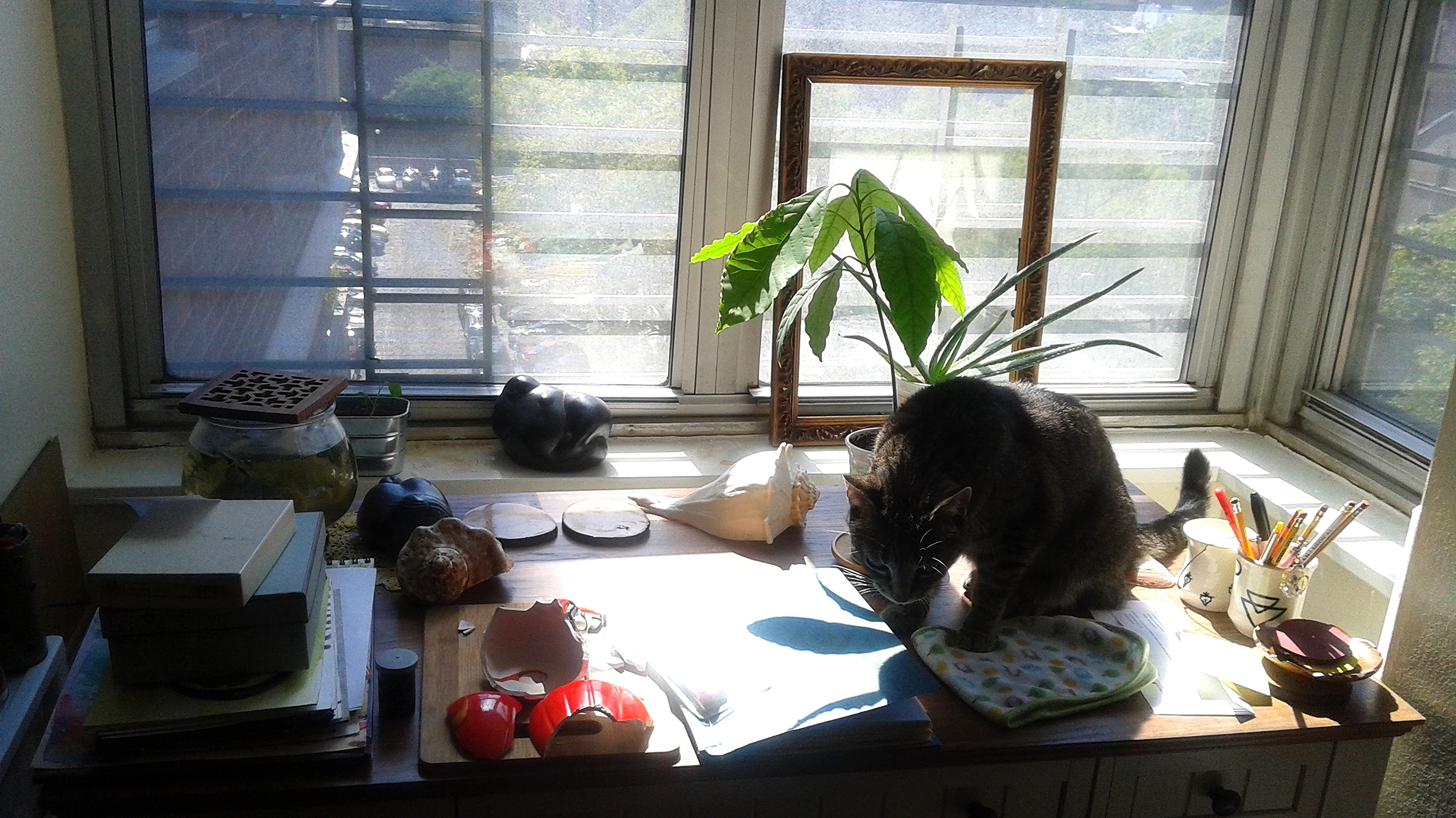 ...this is what my actual art desk looks like! The Messy Desk + cat!