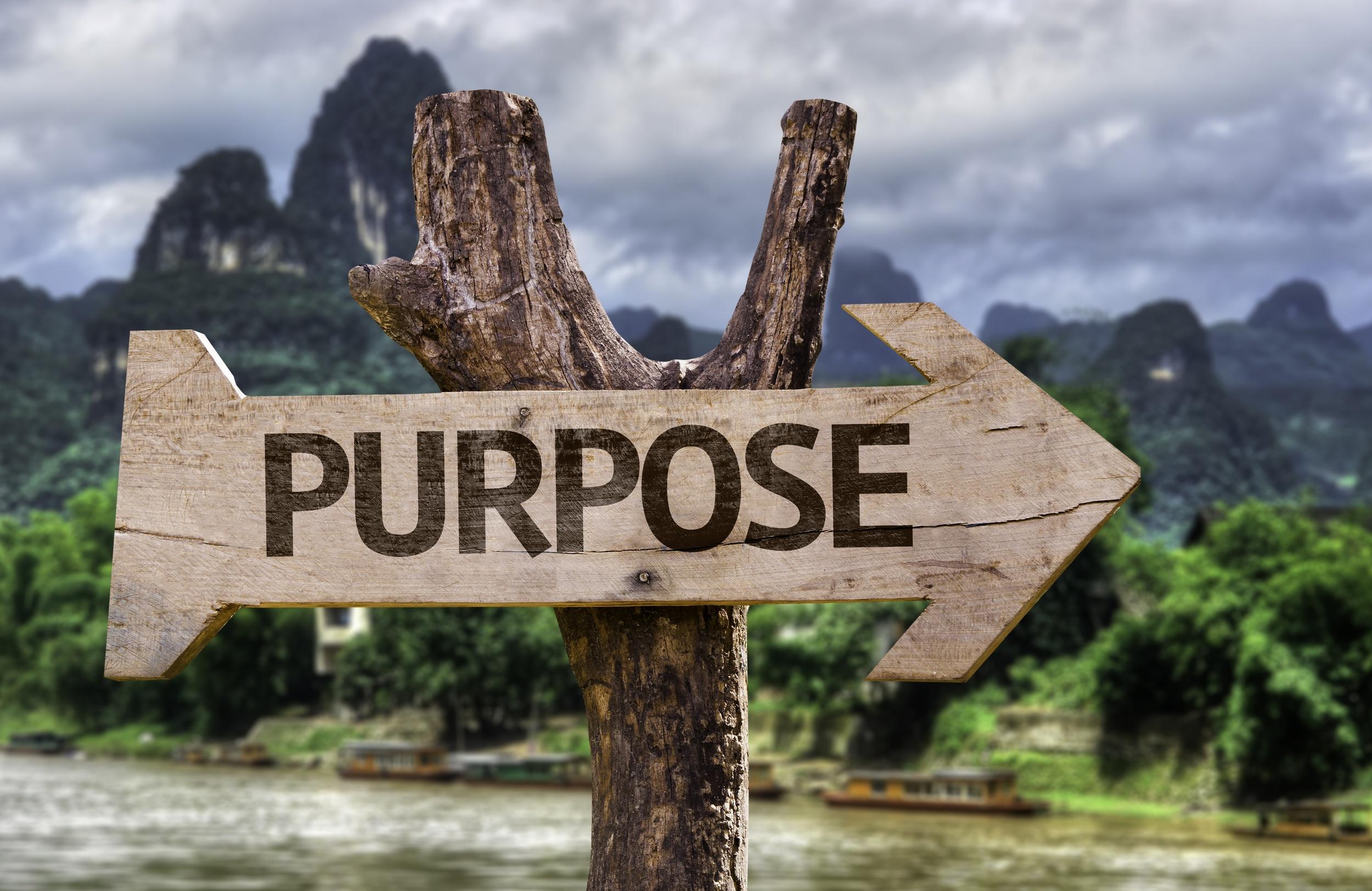 Purpose-Driven.jpg.jpg